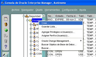 Conectar APEX con una base de datos Oracle externa - Crear usuario en la BD de Oracle Database externa