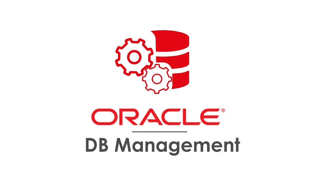 Instalar Oracle Database 11g R2 Enterprise 64bits en Windows Server 2003 64 bits