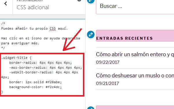 Cómo modificar el estilo visual CSS de un sitio web con WordPress para que no sea reemplazado