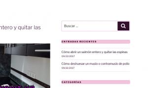 Acceso a la administración de WordPress para modificar el estilo visual CSS de una clase de forma permanente