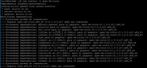 Instalar Open VMware Tools open-vm-tools en Linux CentOS 7 Minimal sobre VMware ESXi 6.5