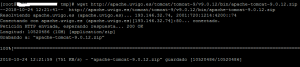Instalar Apache Tomcat 9 en Linux CentOS 7