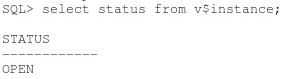 Solucionar error ORA-03113 end-of-file on communication channel en Oracle 11g