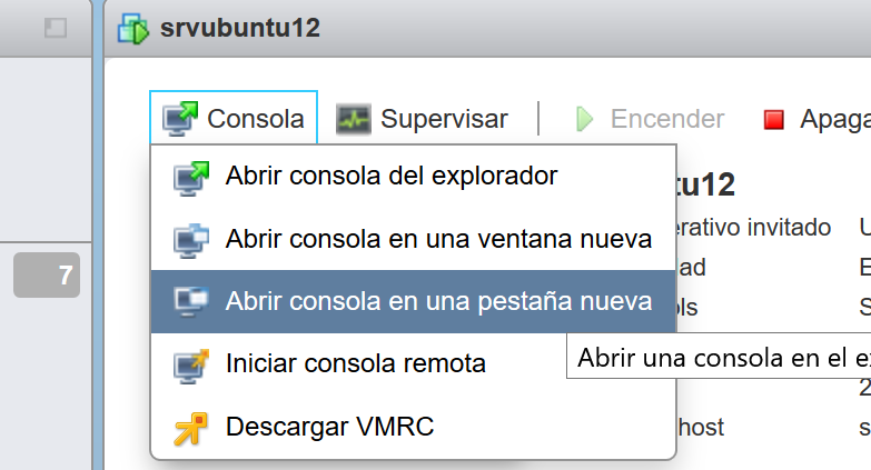 Abrir máquina virtual VMware ESXi en consola web desde el navegador