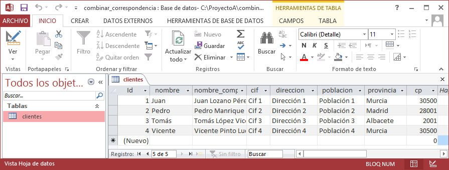 Origen de datos en tabla de Microsoft Office Access