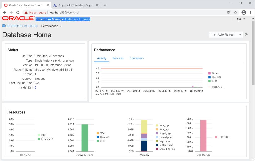Acceso a Enterprise Manager Database Express de Oracle Database 19c