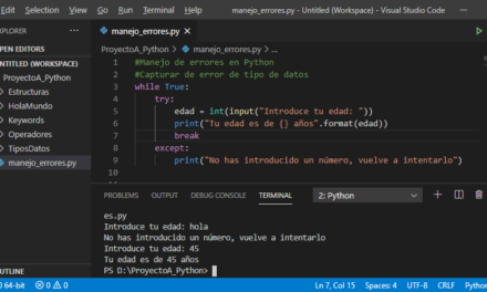 Manejo de errores en Python