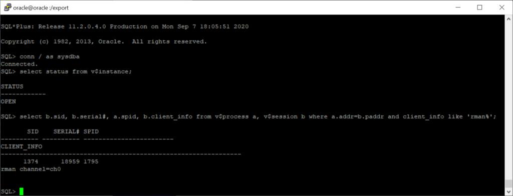 Solucionar error en backup de Symantec de Oracle con RMAN cuando un trabajo se queda en ejecución indefinidamente y no acaba.