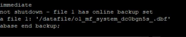 Error en backup de Symantec de RMAN de Oracle el proceso se queda en ejecución indefinidamente